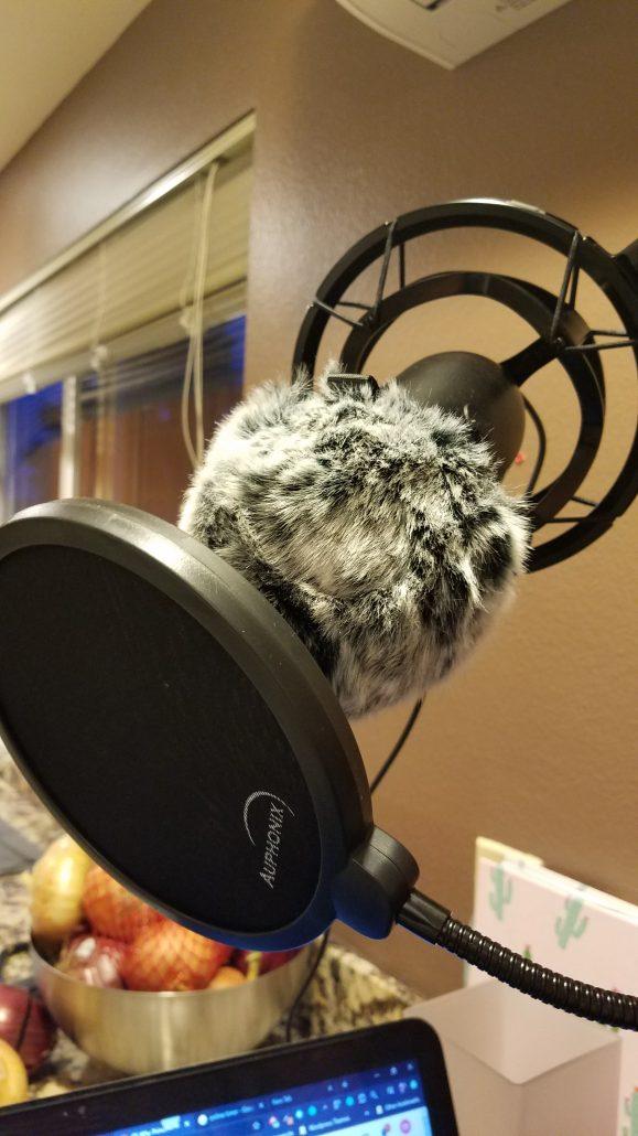 boom-microphone